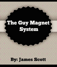The Guy Magnet System